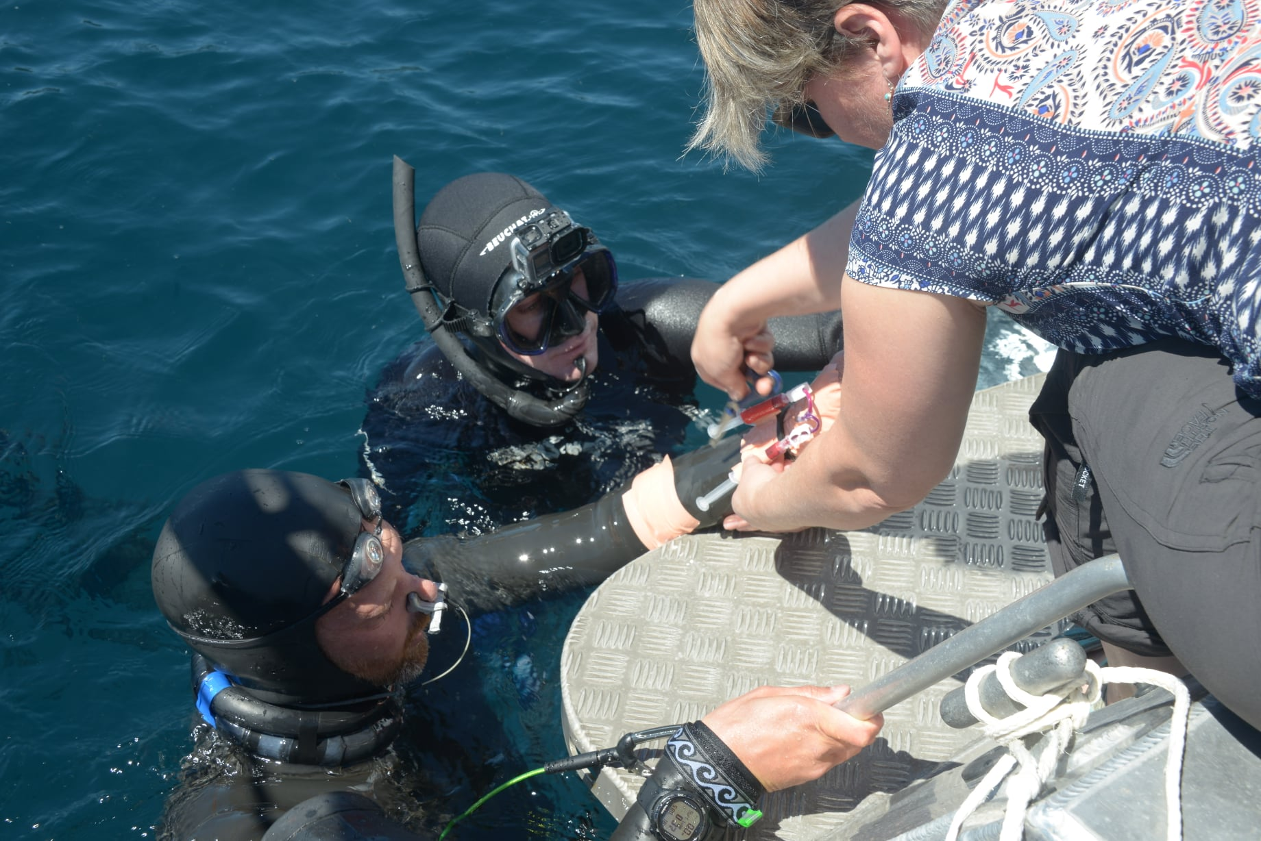 Ground-breaking freediving research